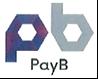 『Pay Bロゴ』の画像