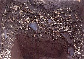 貝塚の断面